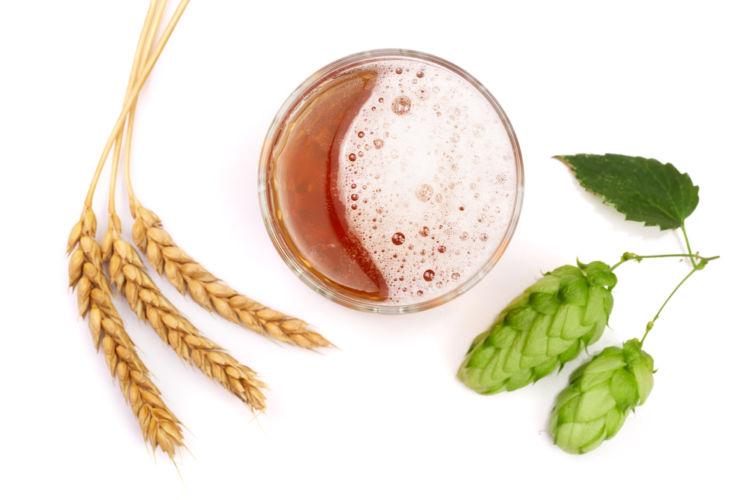 ビールの香りを生み出す3つの要素とは?