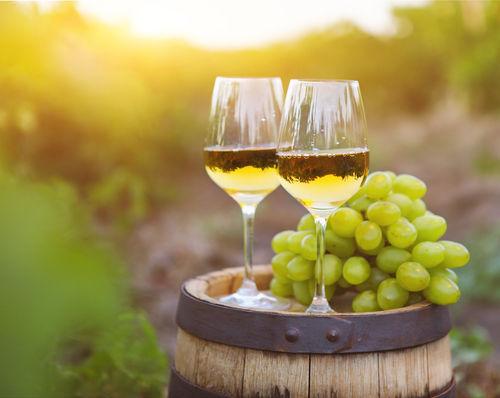 グラッパはワイン用ブドウの搾りかすで造る蒸溜酒