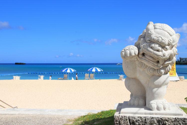 沖縄が世界に誇る「泡盛」の魅力を大解剖!