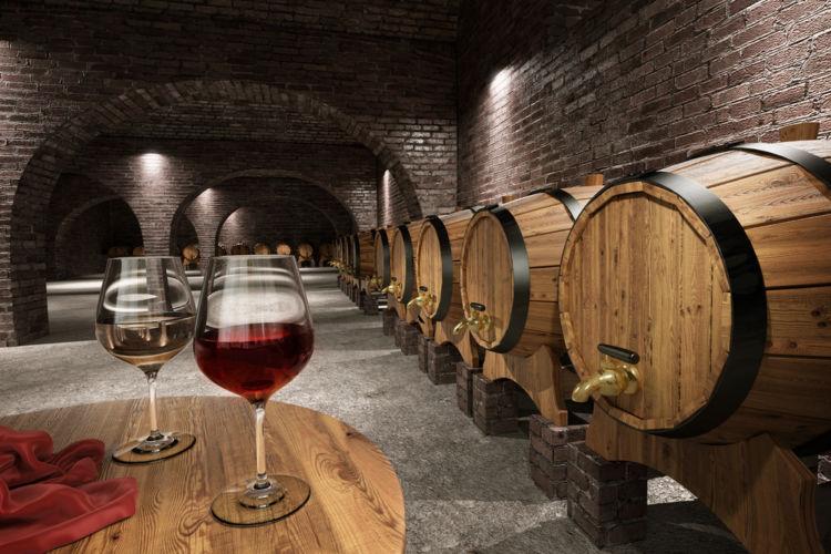 ワイン酵母の種類を知れば、ワインがもっとたのしくなる!