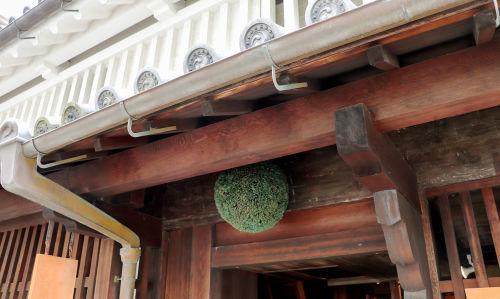 「山廃」の日本酒が注目される理由