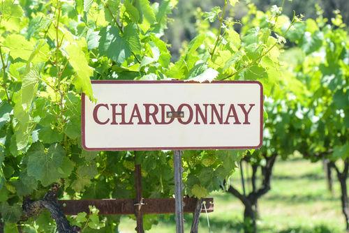 シャルドネの白ワインのおすすめ人気銘柄