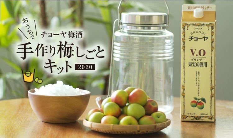 自分だけの梅酒を家でつくれる、チョーヤの「おうちで手作り梅しごとキット2020」がWeb限定発売!