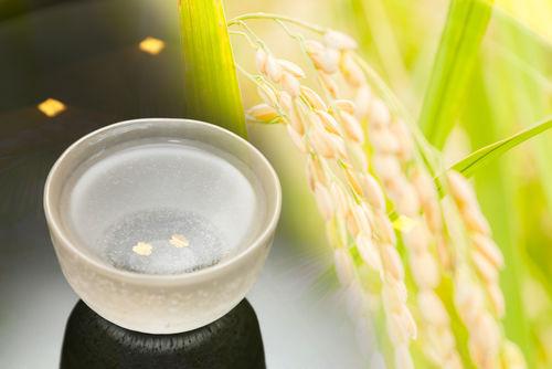 米焼酎の特徴と味わいを知ろう