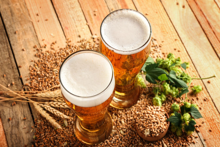 ビールの個性を決める原材料を知って、ビールをより深く味わおう!