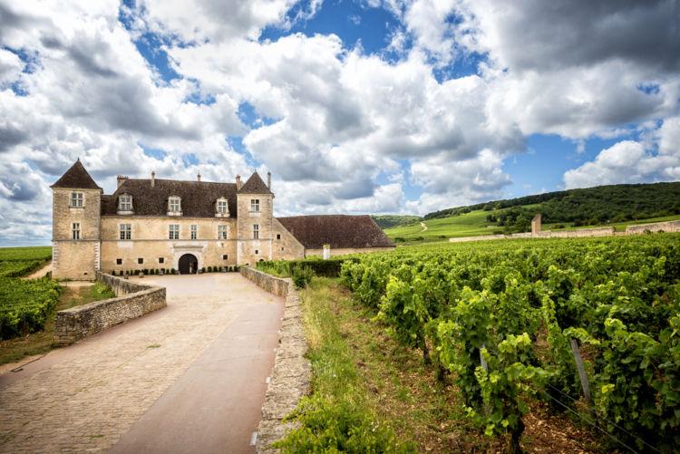 「ドメーヌ」はどんなワイン生産者? 「シャトー」や「ネゴシアン」とどう違う?