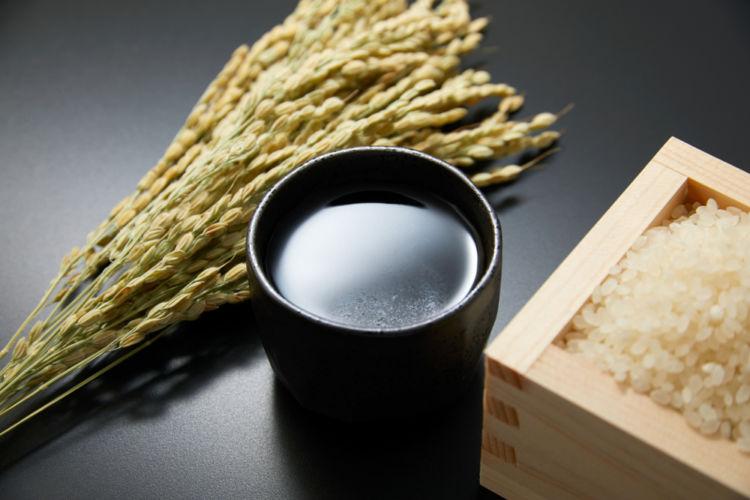 熊本の日本酒【れいざん:山村酒造】地元の人々に愛される阿蘇の銘酒