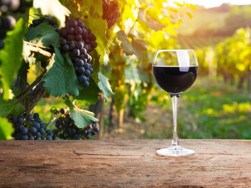 ミディアムボディのワインの選び方