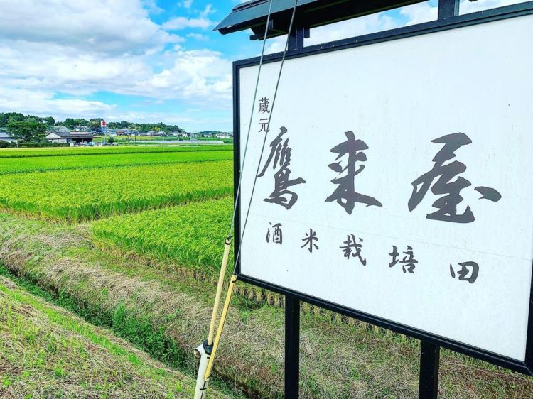 「鷹来屋」は米にこだわって造られる日本酒