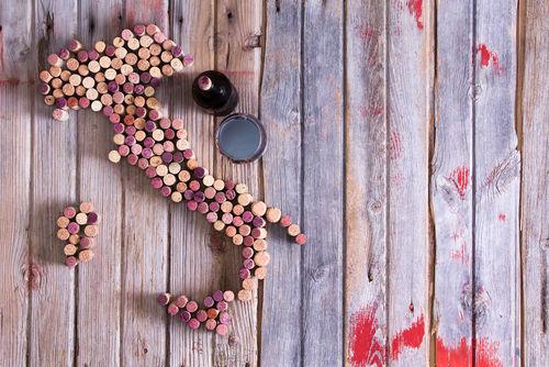 イタリアの赤ワインを代表するブドウ品種5種類