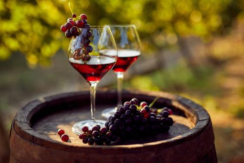 その他の国の赤ワインを代表するブドウ品種4種類