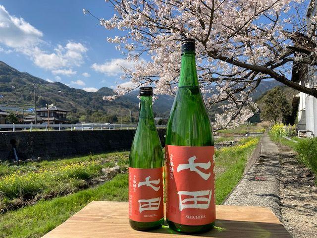 白ワインのような味わいの日本酒「七田 純米 七割五分磨き 春陽」が蔵出し開始