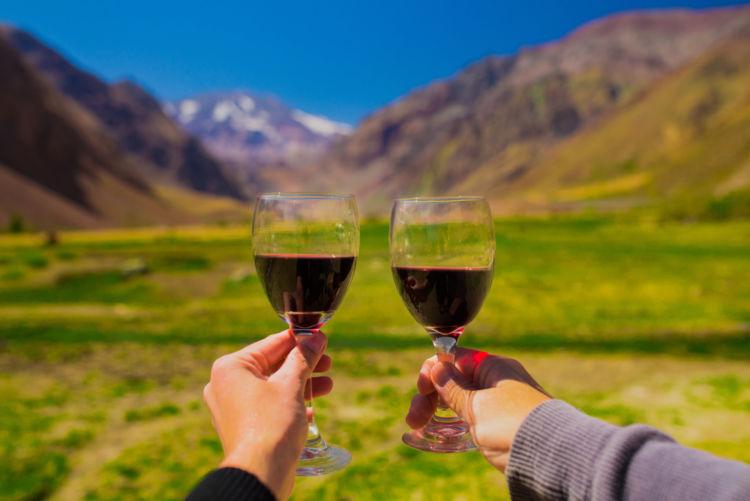 新世界ワインはコスパ良好!生産国ごとの魅力を解説