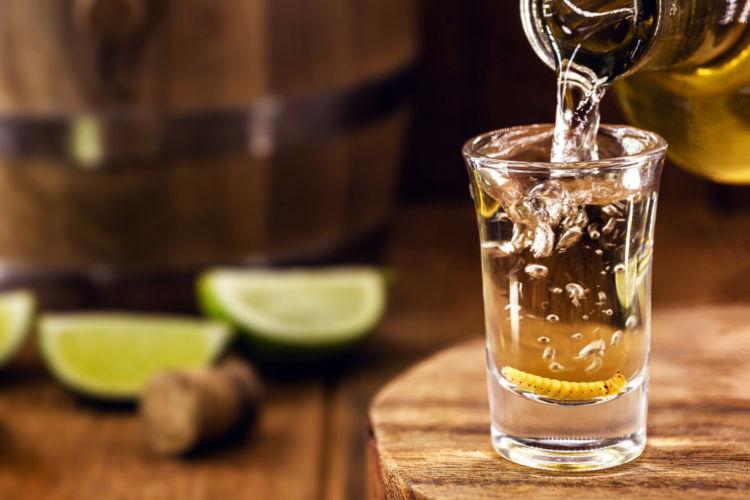 メスカルはテキーラと同じくメキシコ産の蒸溜酒。テキーラとの違いは?