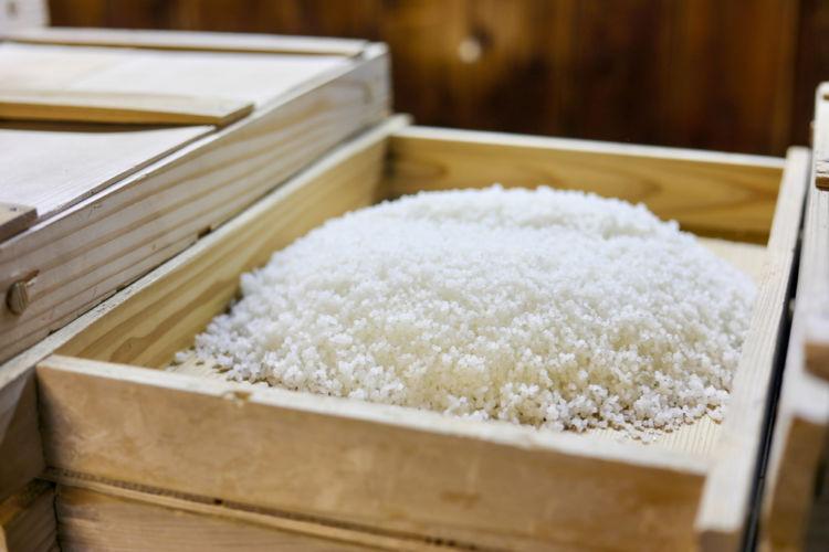 「掛米」の仕込みの前に使用される「麹米」「酒母米」の役割とは