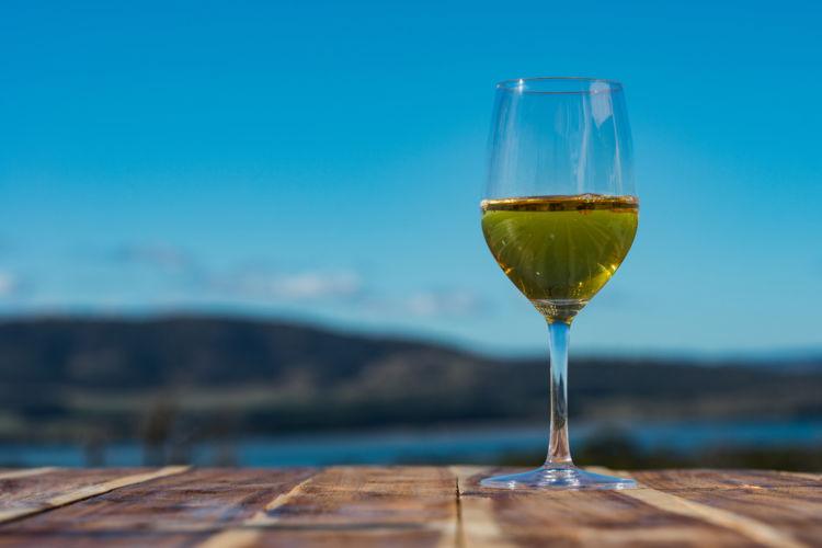 タスマニアワインの注目度が上昇中! 冷涼な気候が生み出す魅力とは?