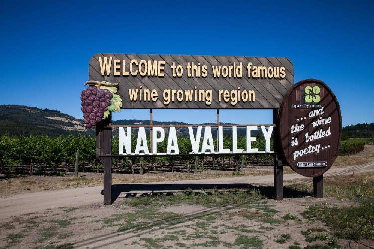 カリフォルニアワインといえばナパ・ヴァレー! ナパの代表ワイナリー