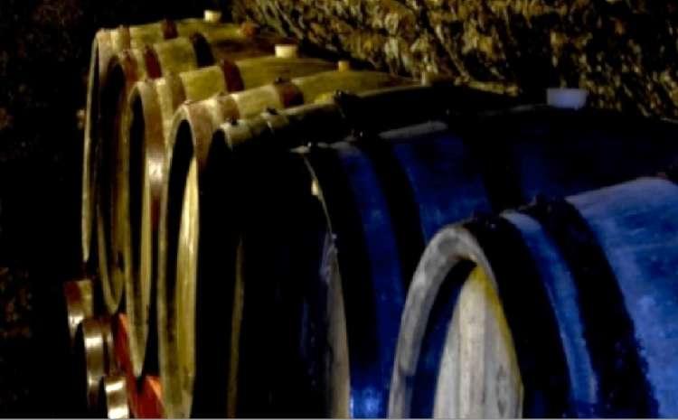 ワインビネガーに使用されるぶどうは全て自社農園で栽培・収穫されたもの。自然発酵したフルミント種の白ワインビネガーにトカイの認定基準で最高糖度の貴腐ぶどうを加え、防腐剤・添加物・砂糖を一切加えずに自然発酵。オーク樽での熟成により、通常のビネガーよりもまろやかな酸味とフルーティーで凝縮された果実の甘味がたのしめ、ドリンクやソースとしても使用できます。