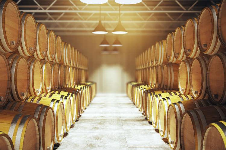 古くからワイン用ブドウ栽培がおこなわれる山梨県・勝沼