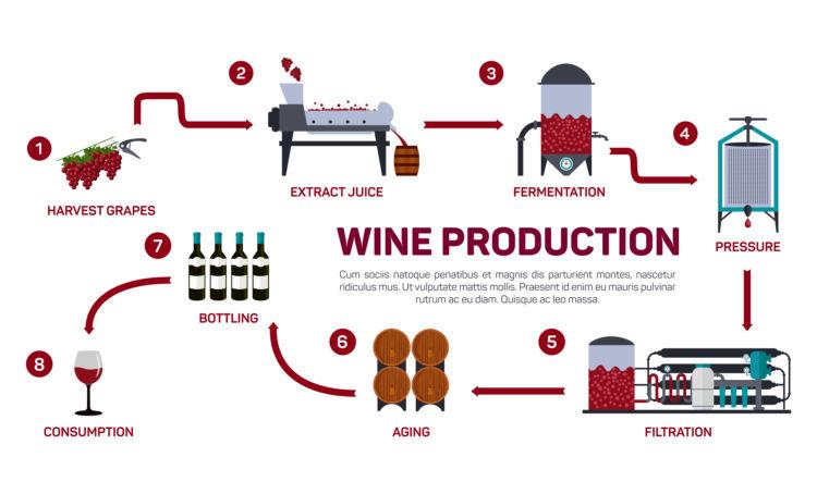 ワインはどうやってできている?