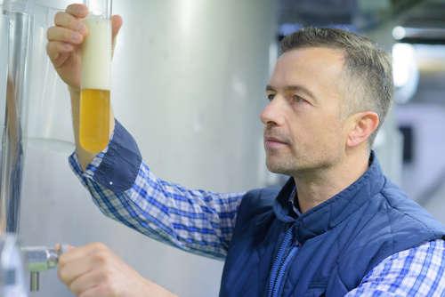 おいしいビールができるのは、酵母=イーストのおかげという事実