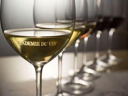 初心者からプロ志望までワインのたのしみ広がる正統派ワインスクール