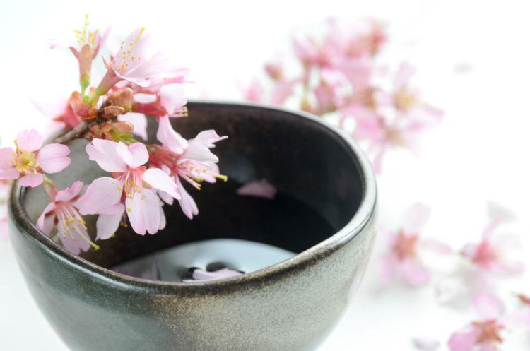 日本酒の輸出量が増加中、今や世界から求められる『SAKE』