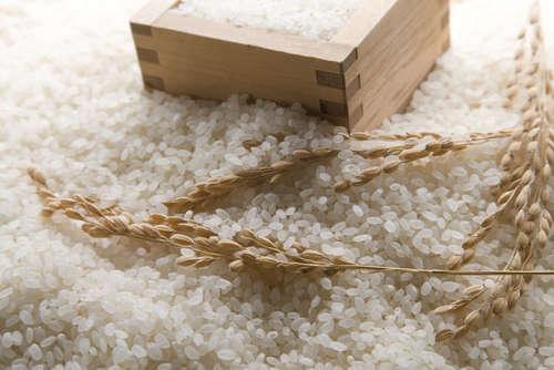 焼酎で米の香りを楽しむ!米焼酎の魅力をお伝えします