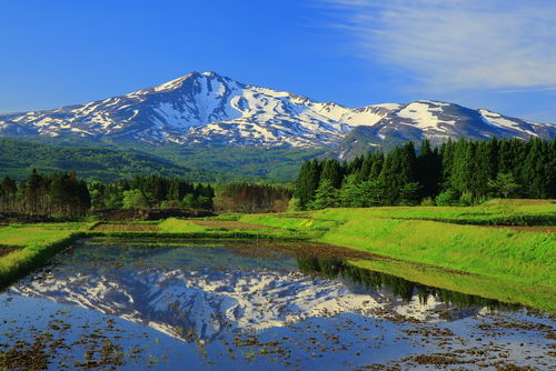 「鳥海山」は老舗蔵元が誇る秋田の地酒