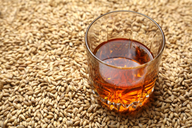 ウイスキー原料は多種多彩! 原料ごとに異なる個性をたのしもう