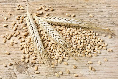 ウイスキーは原料となる穀物の種類によって大別される