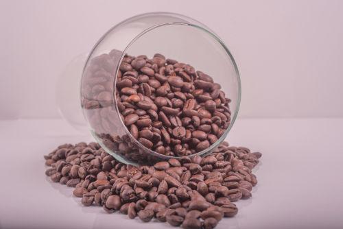 コーヒー焼酎が自宅でもカンタンに!