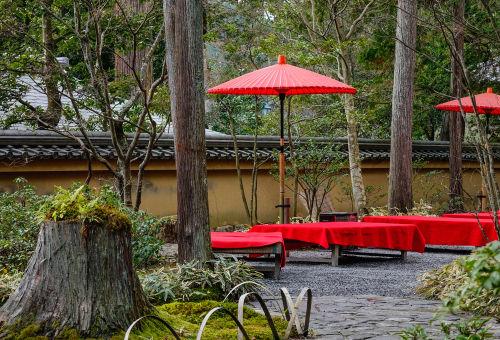 「村尾」は西郷隆盛ゆかりの蔵が造る幻の逸品