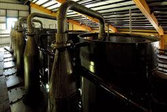 「桜島」の味わいを支える、独特の蒸溜技術
