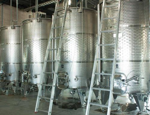 ワインができるまで…ワイン醸造の過程を知る