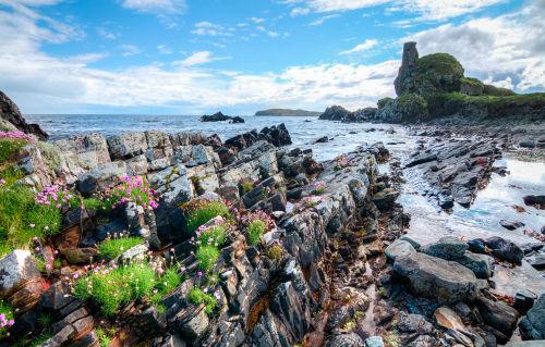 「ラフロイグ」を生んだスコッチウイスキーの聖地、アイラ島