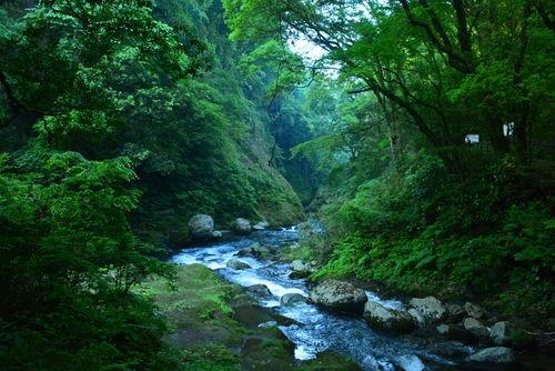 「百年の孤独」は、豊かな自然が育む理想の焼酎