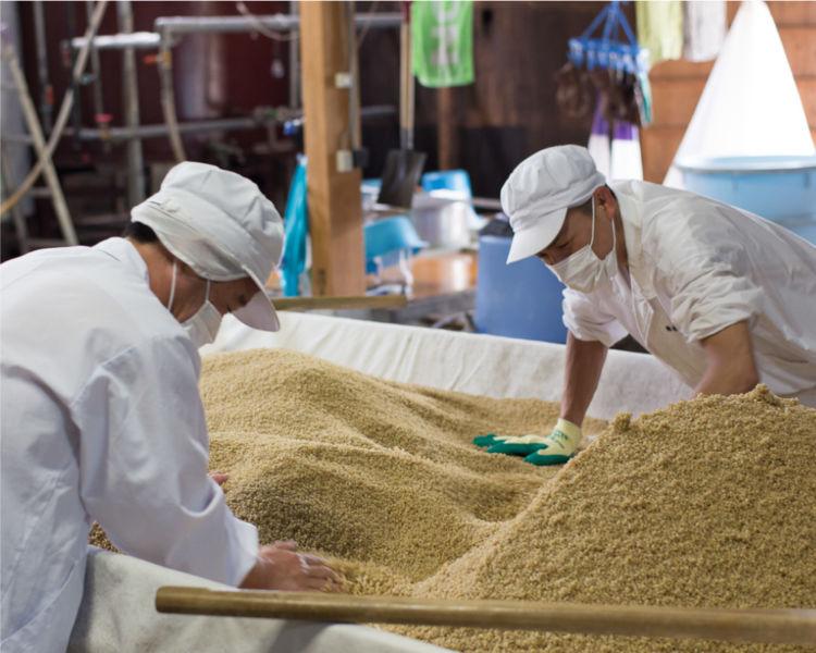 「泰明」は親子二代による完全手造りの麦焼酎