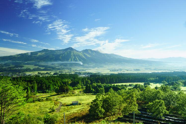 熊本に行って飲んでみたい! おすすめの焼酎【九州編】