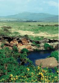 「ボウモア」を生んだスコッチの聖地、アイラ島