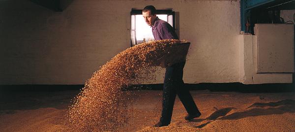 「ボウモア」の品質を支える伝統製法、フロアモルティング