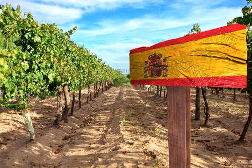「世界三大酒精強化ワイン」をご存知ですか?特徴的な製造方法と無限大の魅力!