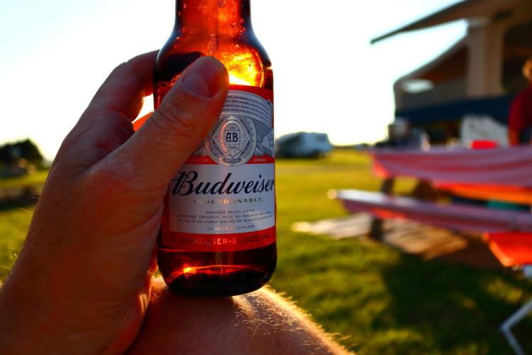 海外の飲みやすいビールを選ぶ
