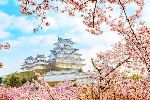 日本酒生産量ダントツの1位は兵庫県