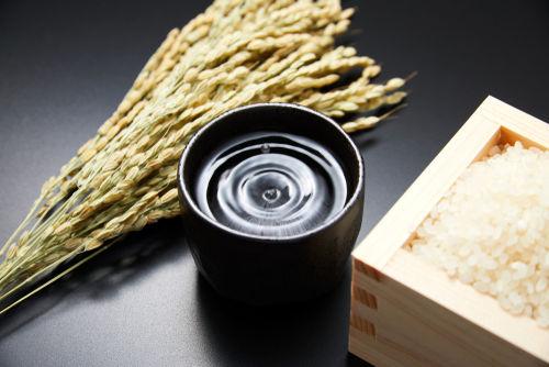 「飛露喜」の味わいを支える、地元原料へのこだわり