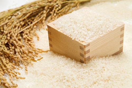 香川県独自の酒造好適米と豊かな水源
