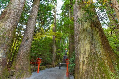 「箱根山」は日本から世界に発信するために命名