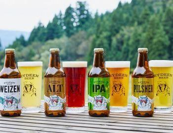 新潟のビール【ライディーンビール(旧:八海山泉ビール)】「八海山」の蔵元が提供する本格クラフトビール
