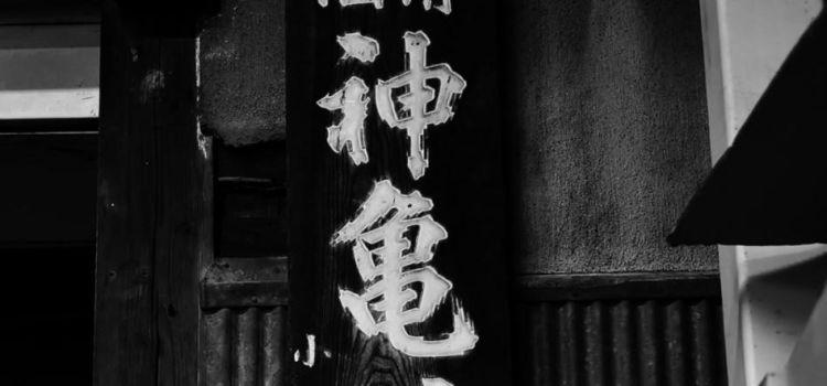 「神亀(しんかめ)」全量純米蔵が造る、究極の食中酒【埼玉の日本酒】