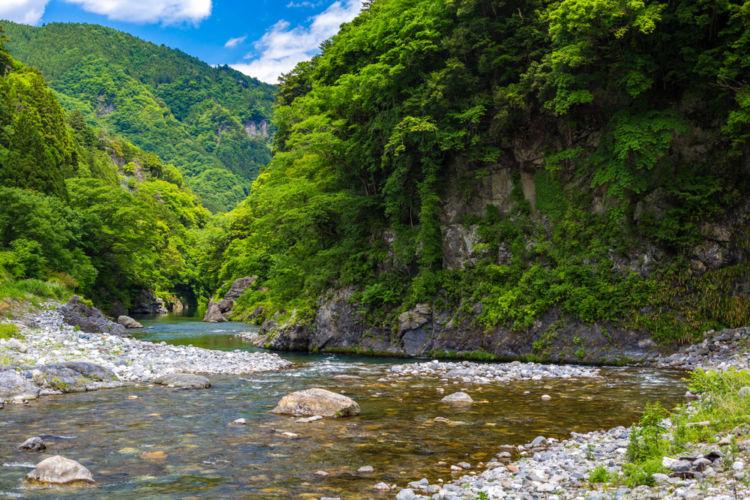 東京の日本酒【澤乃井(さわのい)】奥多摩の名水が生んだ美しい東京の地酒